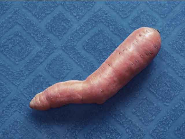 An image of a carrot that looks like a penis with Peyronie's disease